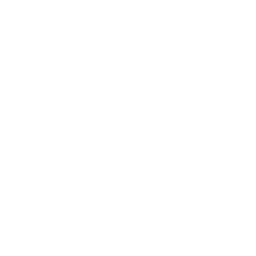 AYUS WELLNESS